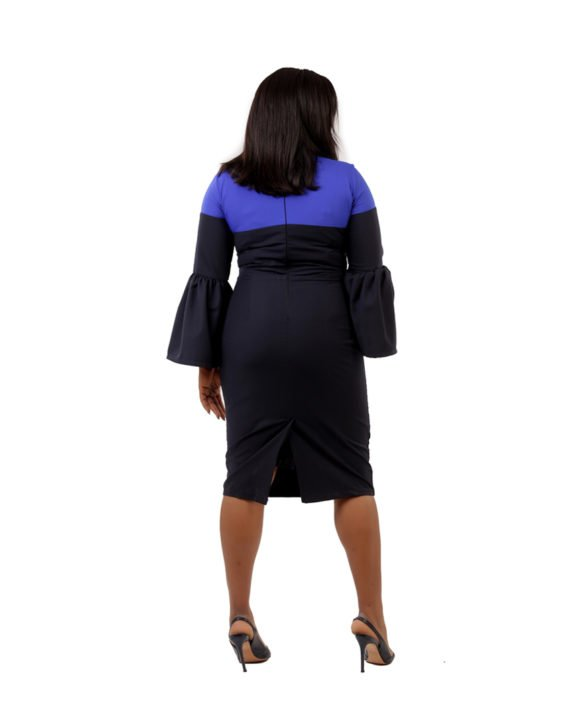 Two - Tone Dress In Black and Royal Blue 3