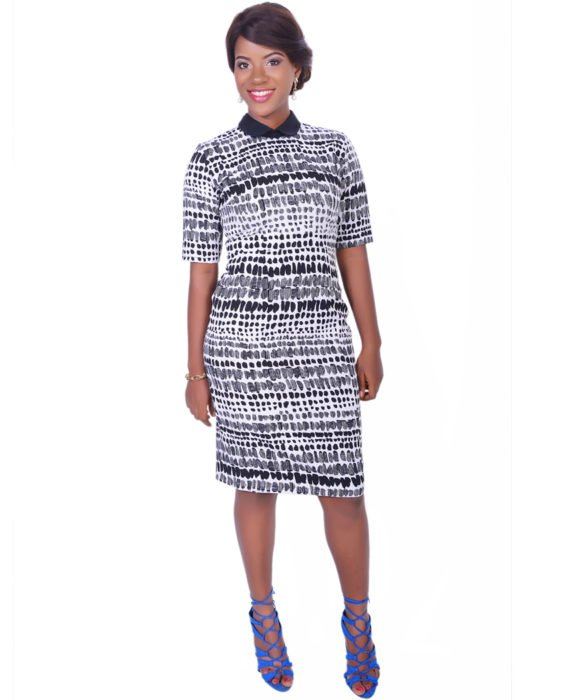Monochrome Contrast Collar Dress 1