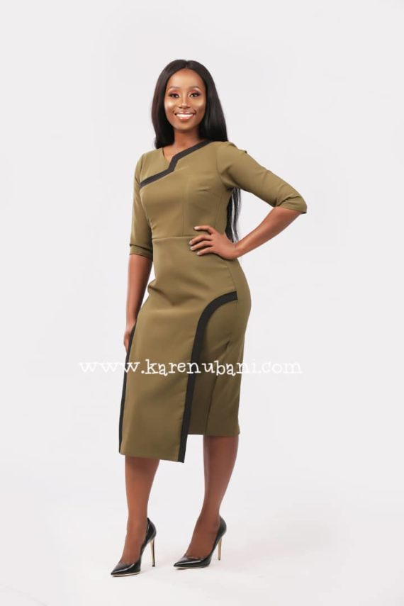The Flotus Dress In Olive 1