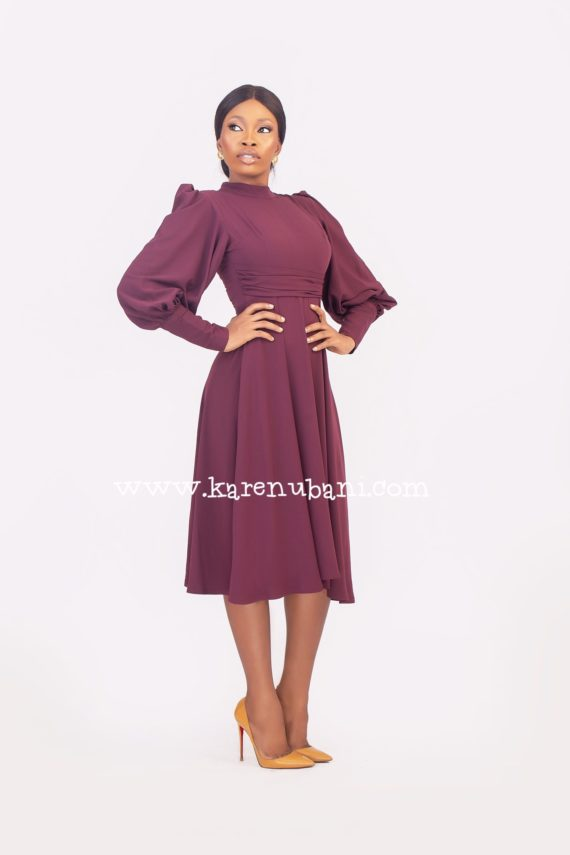 Meghan Flare Dress in Burgundy 3